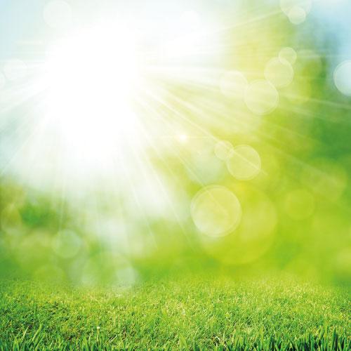 Solutions environnementales pour professionnels et collectivités